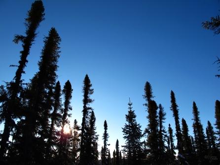 8 February 2014, Near North West River, Labrador.