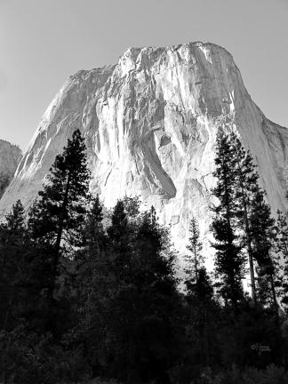 Yosemite National Park, California, USA, 5 July 2012.