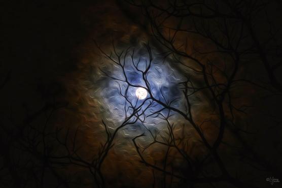Foggy Moon