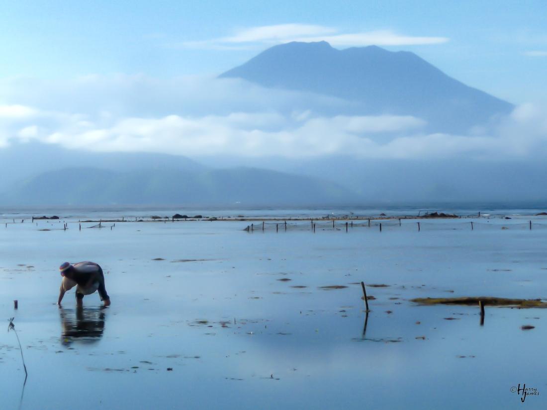 Lembongan Island, Indonesia, 27 June 2010.
