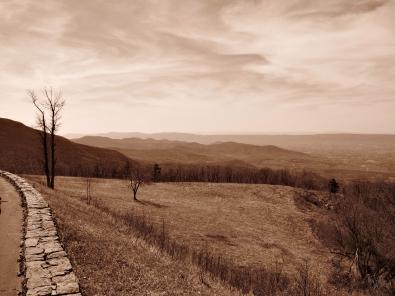 Shenandoah National Park, Virginia, USA, 7 April 2010.