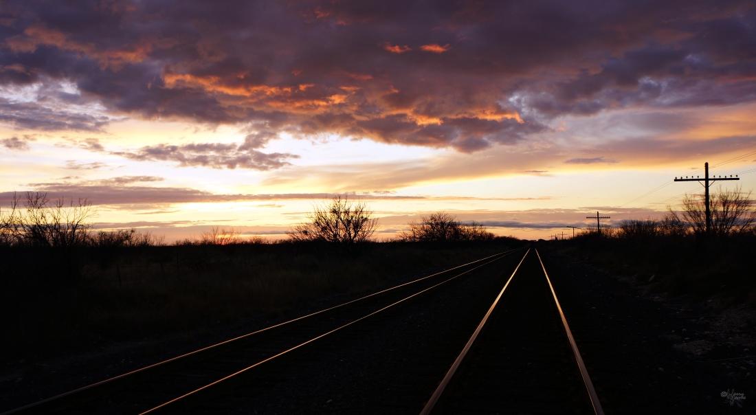 Enroute to Big Bend National Park, Texas, USA, 14 April 2014.