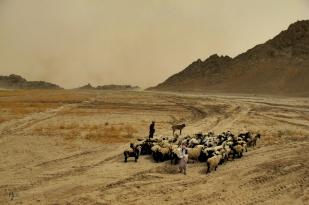 Panjwaii District, Kandahar, Afghanistan, 27 May 2010.